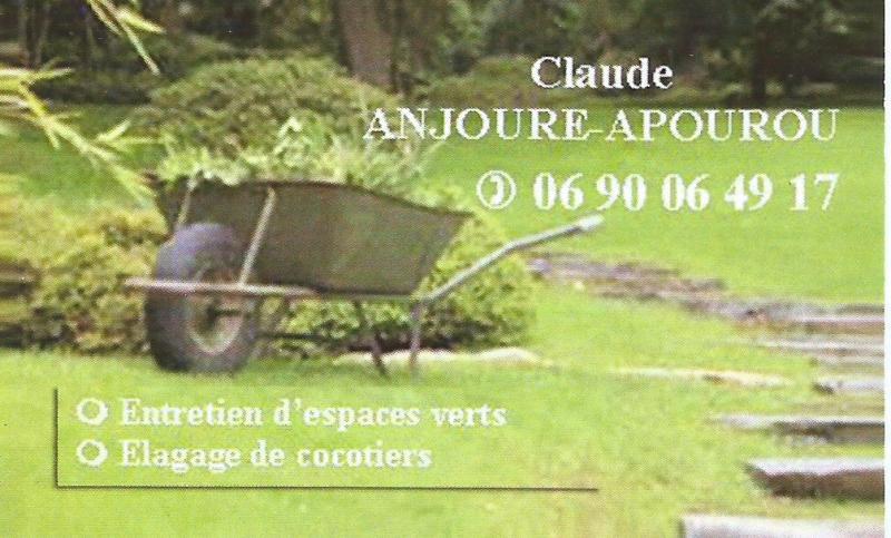 Entretien de jardins et lagage de cocotiers avec claude for Elagage entretien jardin