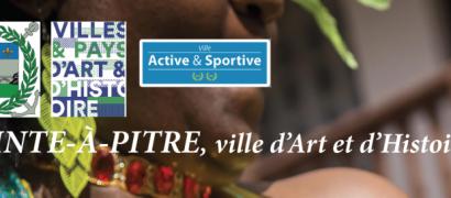 Carnaval 2019 en Guadeloupe :  Les rendez-vous à Pointe-à-Pitre