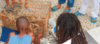 La fête du crabe : un marqueur identitaire pour la Guadeloupe