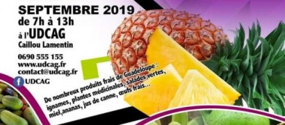 Marché agricole  à Caillou Lamentin le 7 septembre