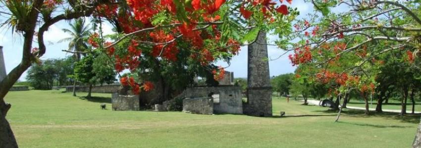 Que la Guadeloupe est belle !