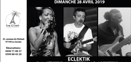 Eclektik en concert au New Ti Paris