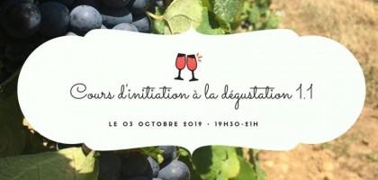 Cours d'initiation à la dégustation du vin 1.1