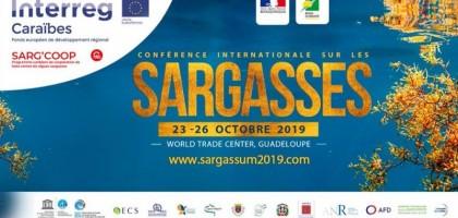 Conférence internationale sur les sargasses
