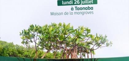 Journée Internationale de la conservation de l'écosystème des mangroves