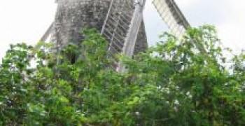 Le Moulin de Bézard