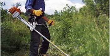 Aménagement et entretien d'espaces verts