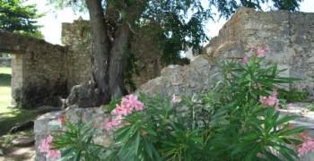 Ecomusée de Marie-Galante