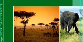 Carnet de Route, Voyage en Afrique