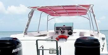 Excursion en bateau et découverte de la mangrove en Guadeloupe
