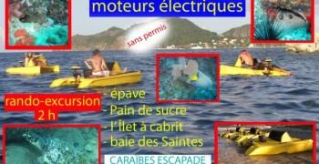 Découverte des fonds marins en catamarans a fond de verre