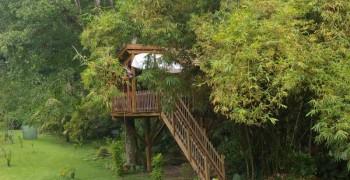 Cabane de pirates en Guadeloupe