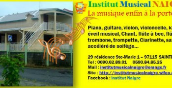 Institut musical Naigre
