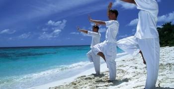 Cours de Qi Gong traditionnel et thérapeutique