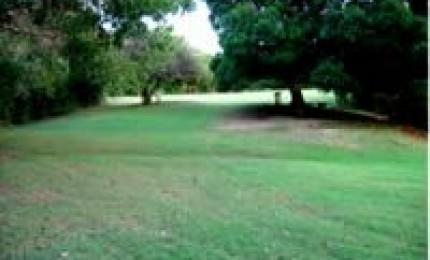 Forêt de Poyen