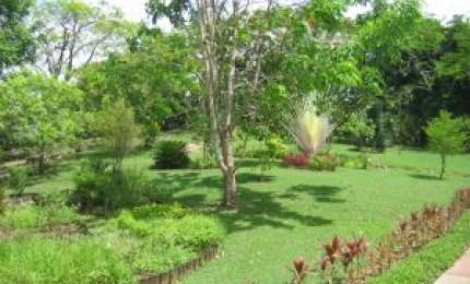 parc paysager de petit canal parcs et jardins grande terre guadeloupe. Black Bedroom Furniture Sets. Home Design Ideas
