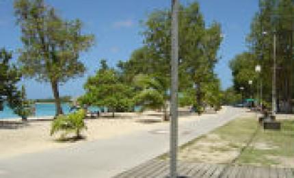 Location Gites Guadeloupe Madelia