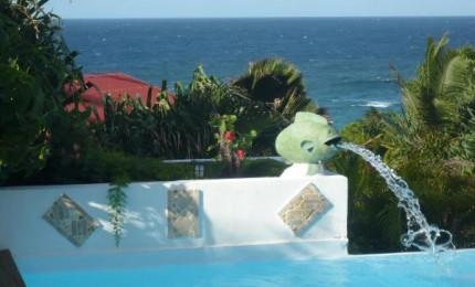 Savane : luxueuse villa accès privé à la mer-piscine