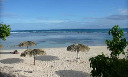 Studio dans superbe domaine tropical :  Anse des rochers