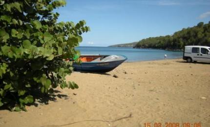 gite sur plage caraïbe pour amoureux de la nature