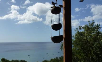 Maison à louer à Pointe-Noire pour vos vacances au soleil des Antilles