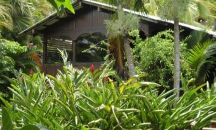 Piton Bungalows - Location de gîtes en Guadeloupe