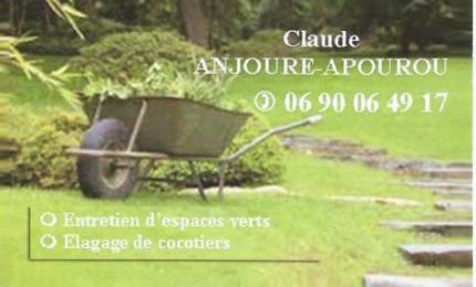 entretien de jardins et lagage de cocotiers avec claude
