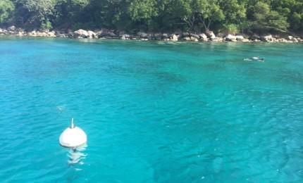 Journée voile et snorkeling aux Saintes