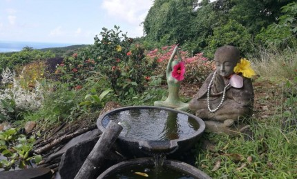 Reiki en Guadeloupe