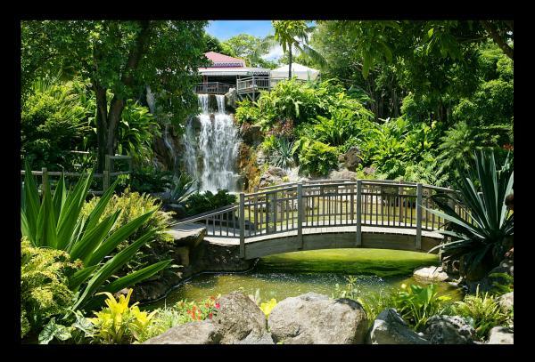 Jardin botanique de Deshaies - Parcs et jardins - Basse-Terre ...