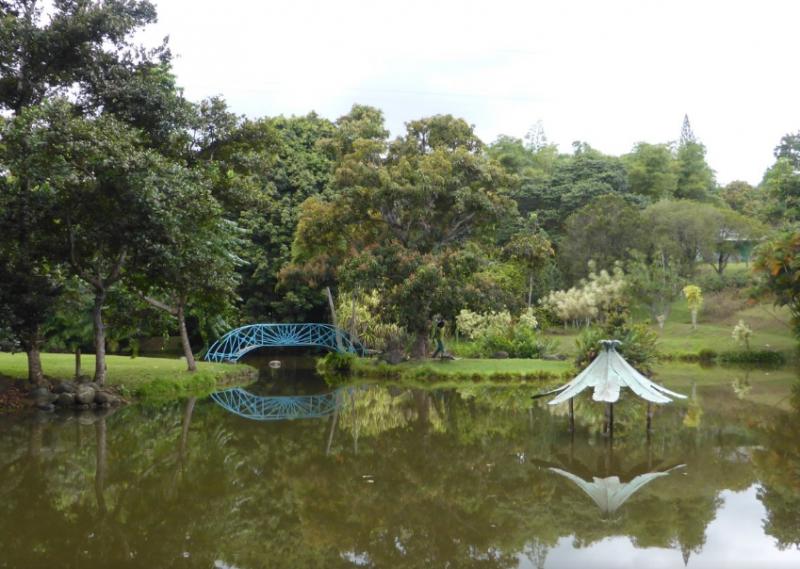 Le jardin d 39 eau de blonzac jardin de blonzac parcs et - Jardin botanique guadeloupe basse terre ...